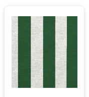 Neoprene Cover – Green Stripes (COSNC-100-STRGreen)